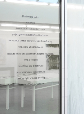 Un-dressing codex_ text on glass installation at Galerie Miroslava Kubika, circa 60 x 90 cm_2017
